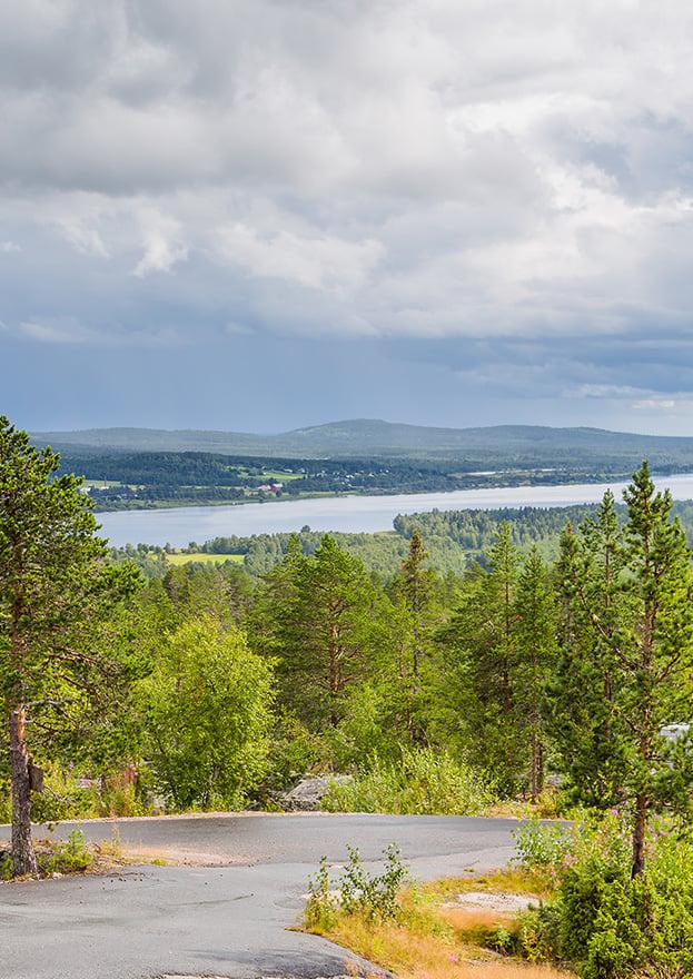Pellopuu luotomaisema Torniojoki pysty